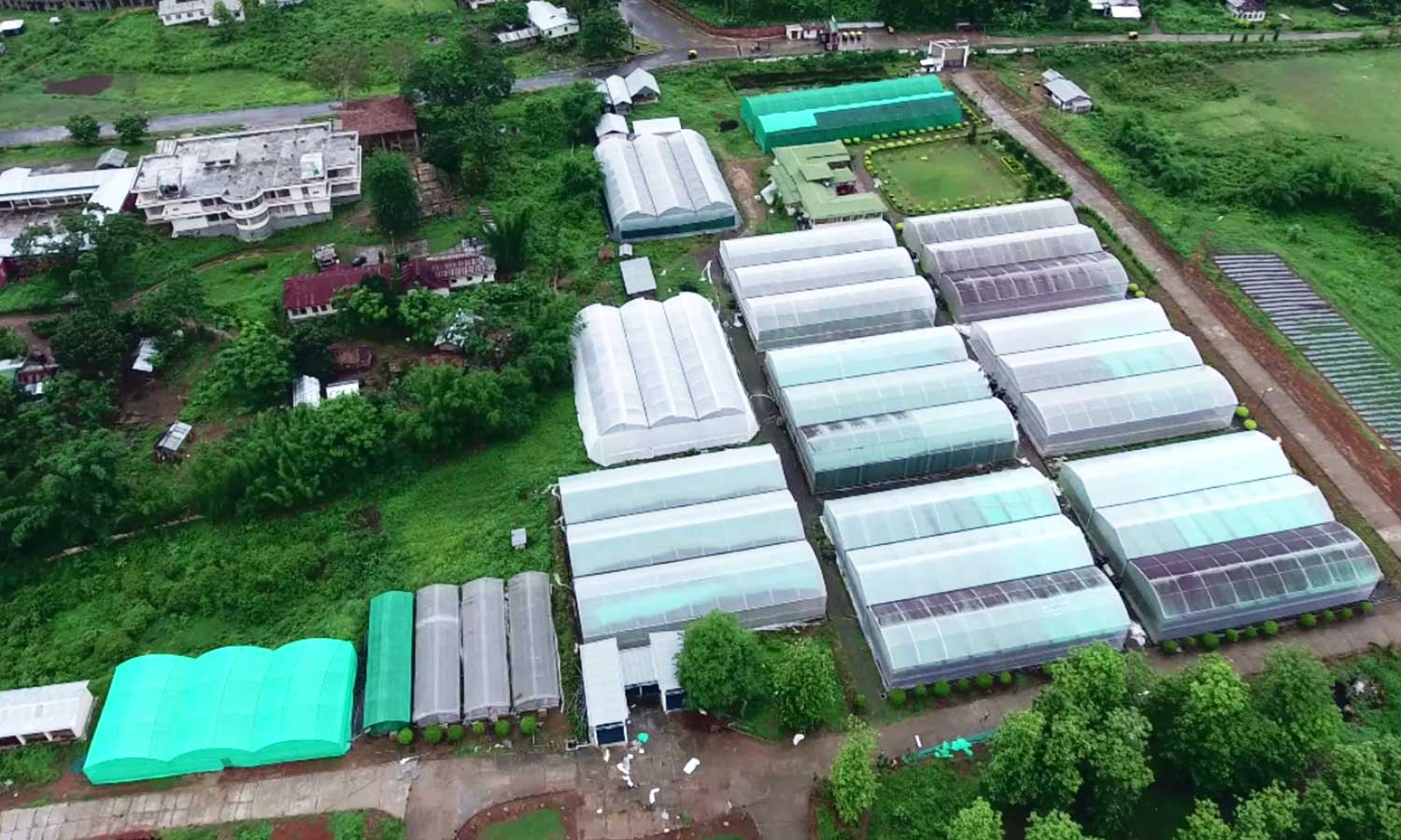 Aerial View of Polyhouse